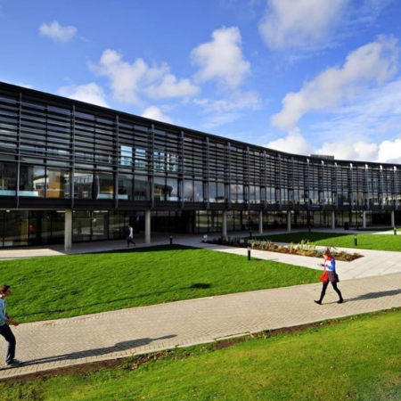 Sun shining on the Checkland building on the Falmer campus
