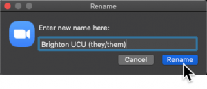 Screenshot of typed in pronouns in the window and a cursor pointing to rename
