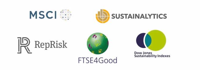 Environmental, Social & Governance rating bodies