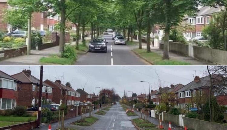 Trees lining a road and the same picture after the trees had been removed
