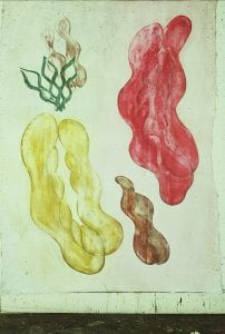 colourful Painting of bean pod like shapes