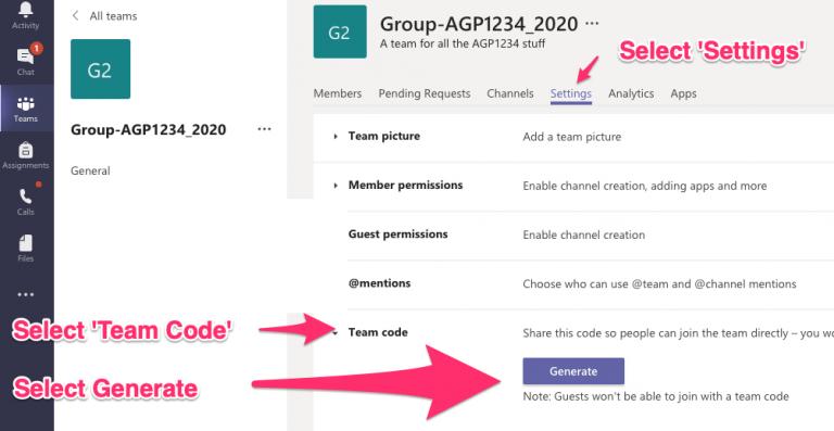 Select settings, team code and generate