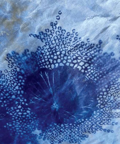 print by jill flower