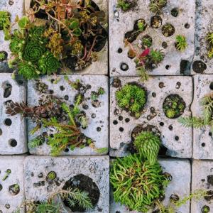 Brighton sweeps environmental awards at New Designers