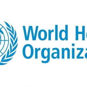 Brighton professor to assist World Health Organization