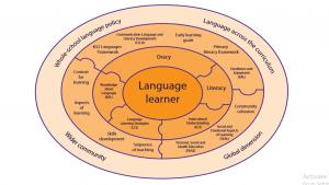 Reflections on Pedagogy   My PGCE Journey