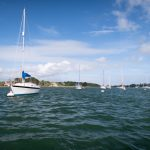 Eco-action in Chichester Harbour; undercover policing; sustainable drainage and more…SECP news September 2021