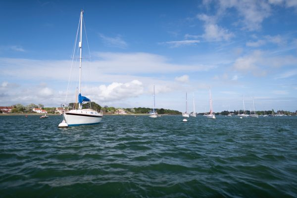 Chichester Harbour, Sussex, bright sky and a row of anchored yachts with sails down disappearing into the distance.