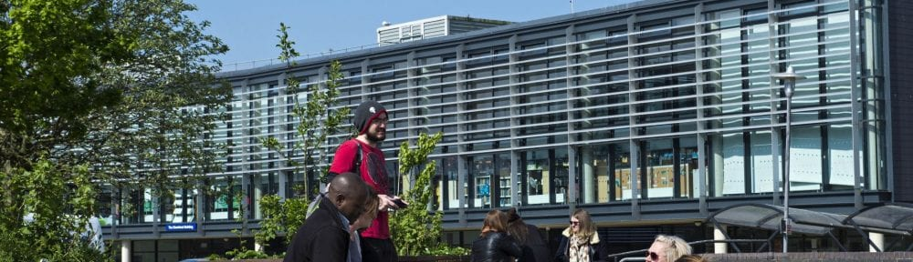 Image of the Falmer campus