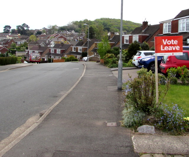 Vote Leave sign, Malpas, Newport © Copyright Jaggery/Geograph.com