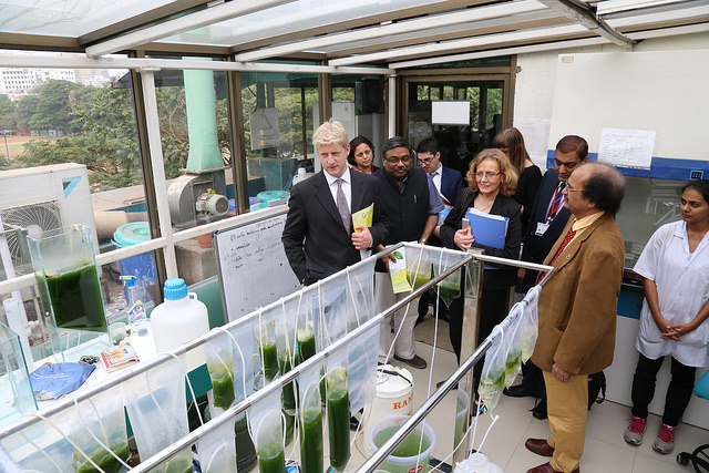 UK's minister of State for Universities and Science, Jo Johnson speaking to students of Institute of Chemical Technology Mumbai, December 2015. British High Commission, New Delhi/Flickr (CC BY-NC-ND 2.0)