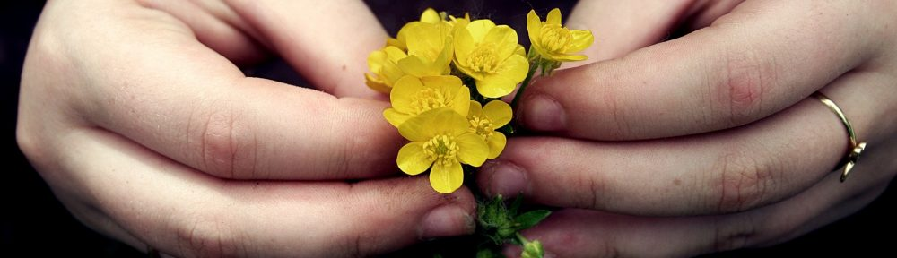 Hands yellow flower
