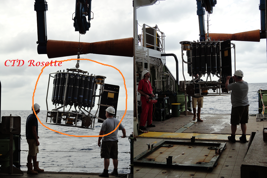 CTD Rosette on the move.  The system houses 24 Niskin bottles to collect seawater at different depths. There are sensors which measure seawater conductivity, temperature and depth in-situ.~Photo by Stephanie Bates