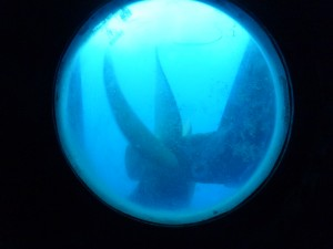 One of RRS James Cook's propellers, seen during a tour of the engine rooms