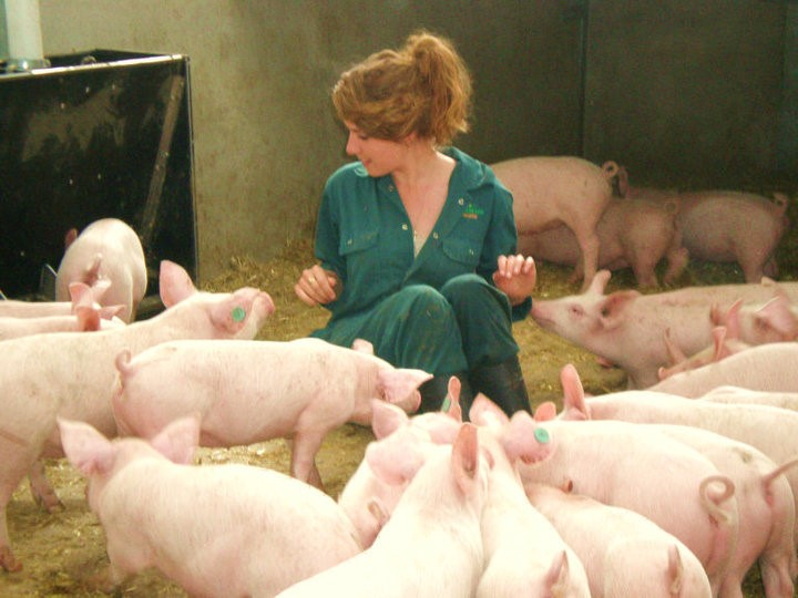 Grace in her happy place: dolled up in scrubs and surrounded by pigs