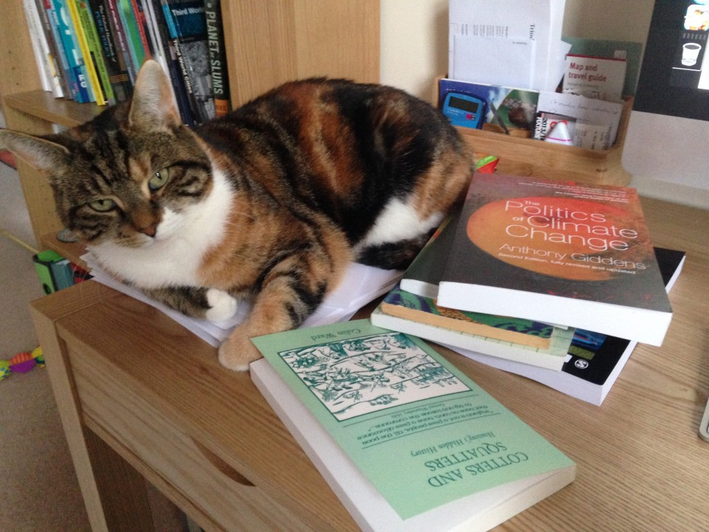 Tessa's cat keeps her looking on the lighter side of her reading.