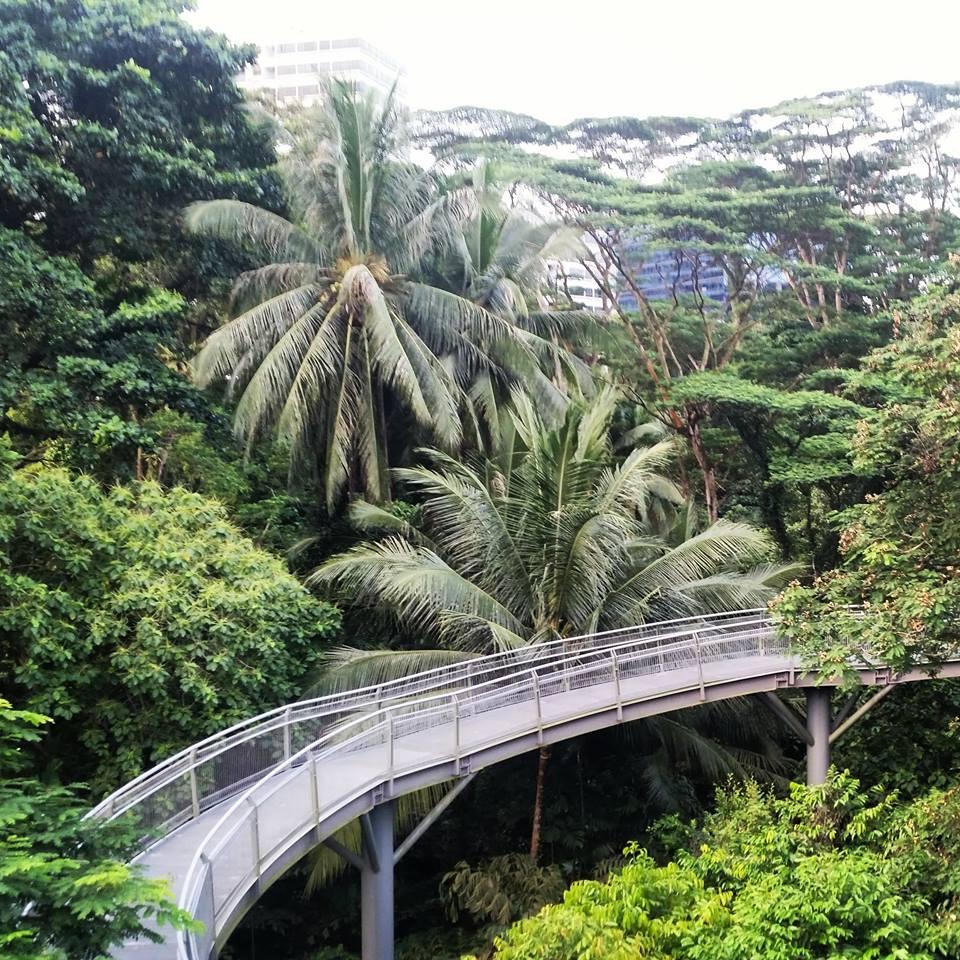 Telok Blangah Hill Park, Singapore