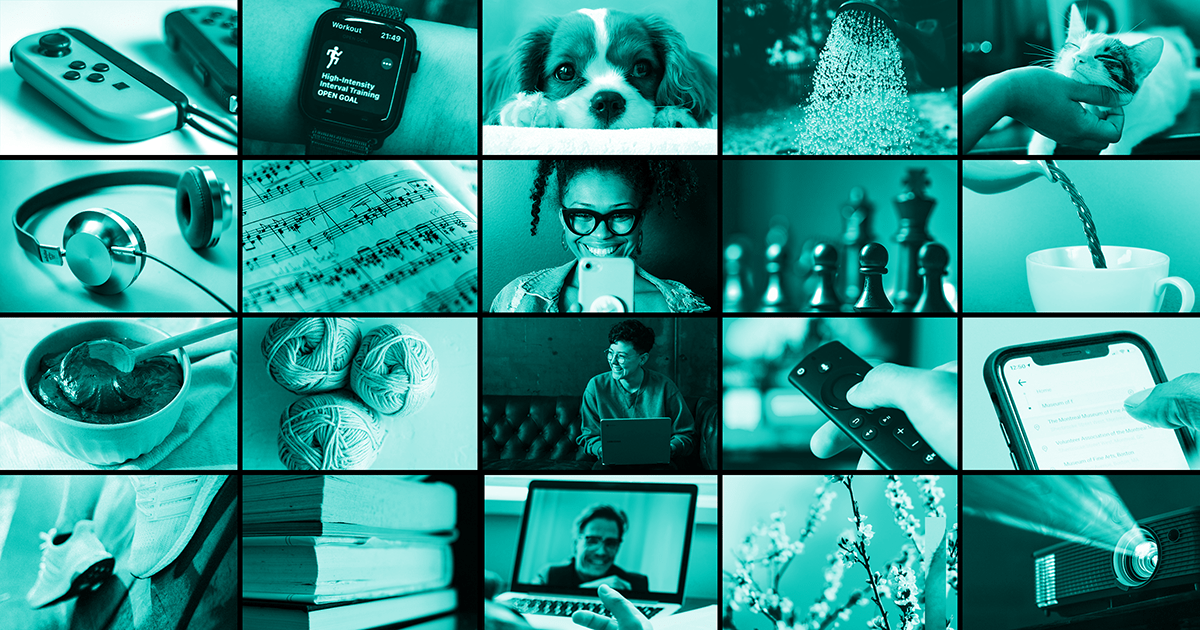 20 small images. From left to right (across four rows of five images): Nintendo Switch controllers; Apple Watch with fitness data; small dog; watering can; cat being stroked; headphones; sheet music; person smiling at phone; chess pieces; tea being poured into a cup; chocolate baking mixture being stirred by a wooden spoon; three balls of wool; person on couch using a laptop; hand on a TV remote; thumb on an iPhone screen; two trainers; a pile of books; person on laptop screen with gesturing hand in front; branches; light from a projector.
