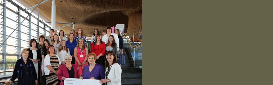 Group of women at National Assembly for Wales