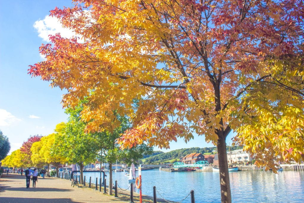 Bristol Harbourside in autumn