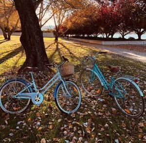 Bikes rides in Bristol