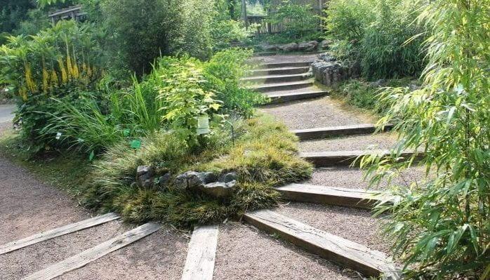 Chinese Herb Garden