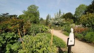 Western Herb Garden