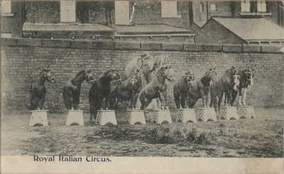 Royal Italian Circus - by kind permission of the Bristol Record Office (BRO: Vaughan Collection 43207/38/4/2/1)