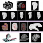 Object Modelling From Sparse And Misaligned 3D and 4D Data