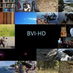 BVI-HD: A Perceptual Video Quality Database for HEVC and Texture Synthesis Compressed Content