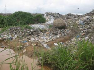 Fig 1: Chunga Dump, Lusaka