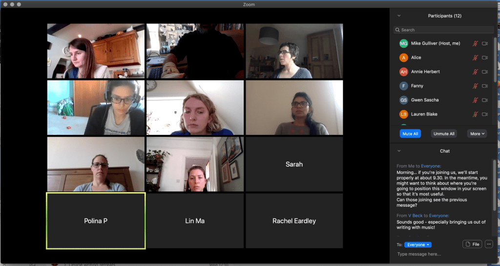 screengrab of zoom online meeting with 12 panels, each showing an individual writer. A chat stream is on the left.
