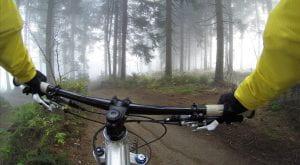 Cyclist riding a bike through woods
