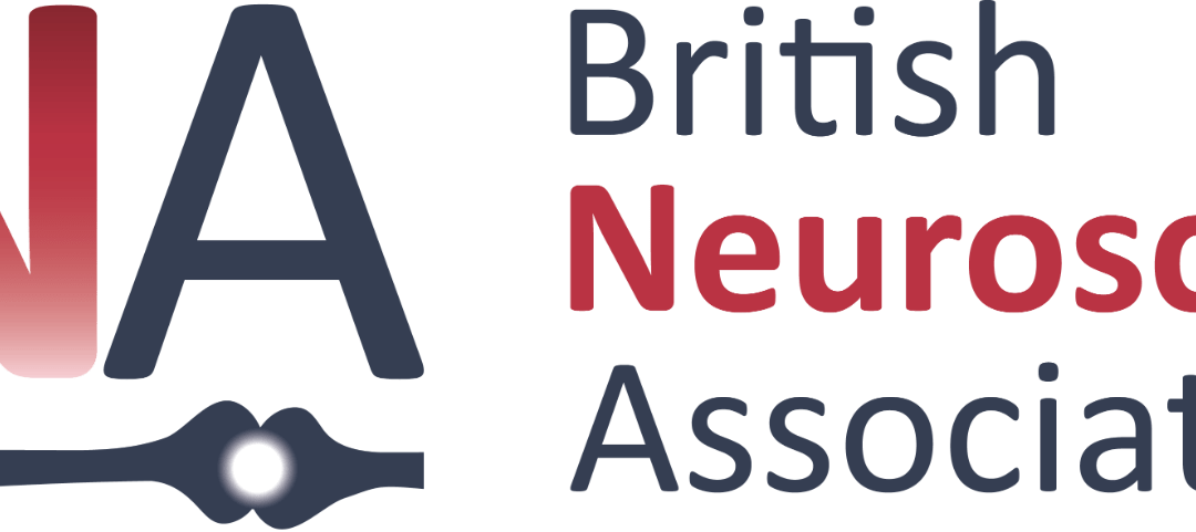 Winners of the 2021 BNA Credibility Prize