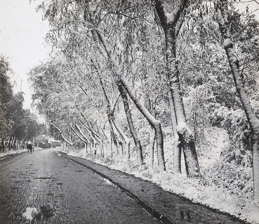 Road after snowfall, with rickshaw, Hulme collection, OH03-007.