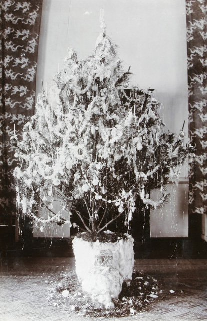 Christmas tree, Commissioner's House, Lappa (Macao) 1908. Hedgeland collection, He01-217, © 2007 SOAS.