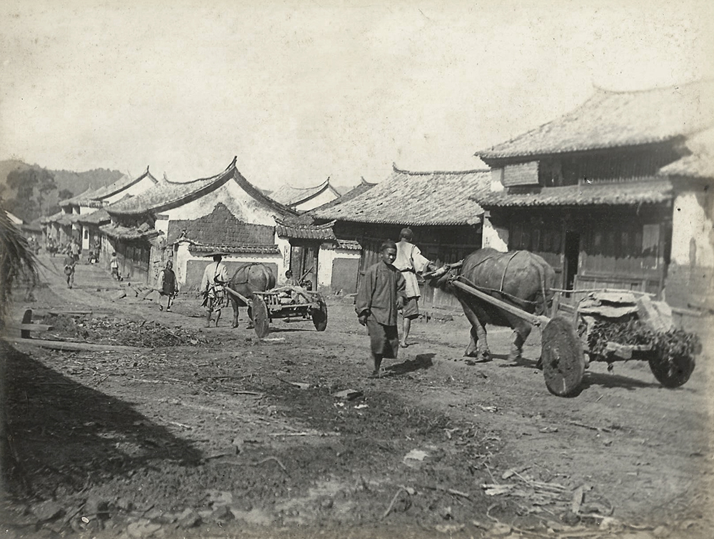 Buffalo carts on a road in Szemao. There was also a striking contrast between Chinese architecture and that of the tribal people. Frederic Carey Collection, FC01-20 © 2011 Ann Kinross.