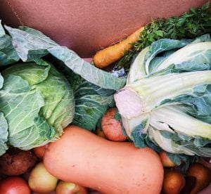 A pile of fruit and vegetables, for example squash, apples, cabbage and carrots.
