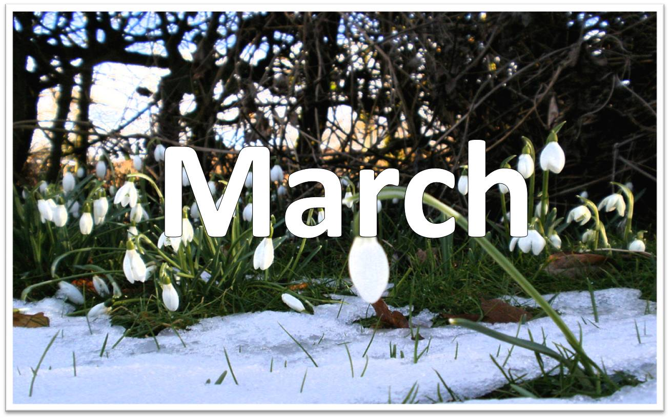 Welcome March Images & Pictures - Becuo
