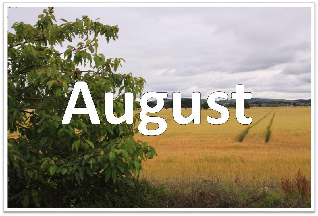 ldc 2011 12 august ldc