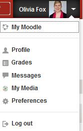 Moodle User menu