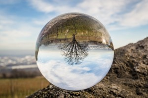 Looking into the Crystal Ball, what do we see?