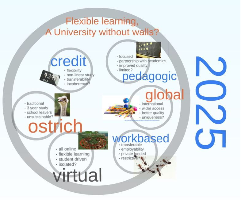 Predictions of 2025 made in 2010 - flexible learning, a university without walls?