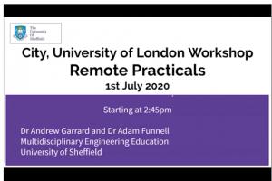 Screenshot of remote practicals presentation