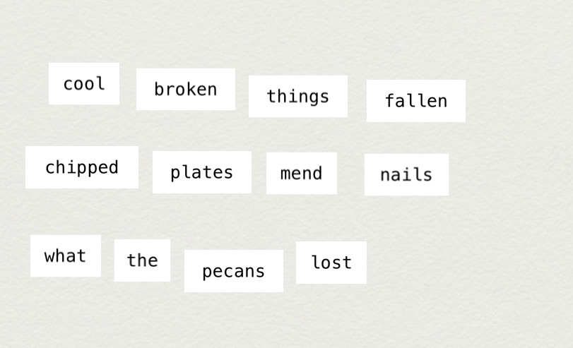 MakeWrite text: cool broken things fallen / chipped plates mend nails / what the pecans lost