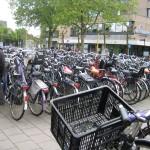 Gouda bikes