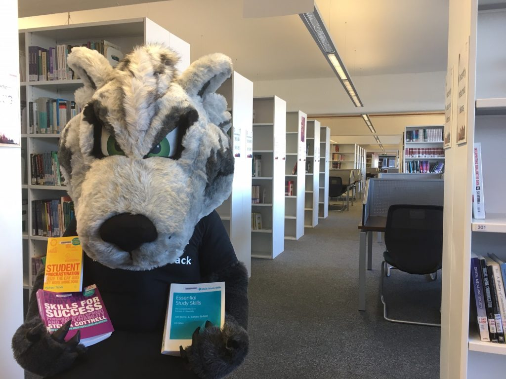 Photograph of CityWolf and some prizes (study skills books)