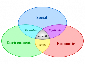 Figure 1 (Source: Institute for International Urban Development)