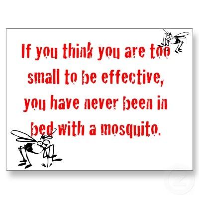 Betty Reese mosquito