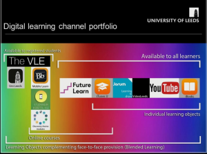 The University of Leeds Digital Learning Portfolio outlining who sees which platform.